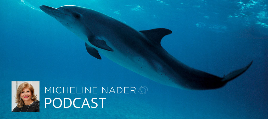 MICHELINE-NADER-PODCAST-DOLPHINS-DANCE